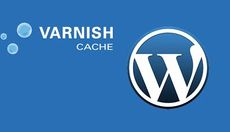 Varnish + Wordpress = Fast
